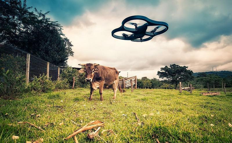 Modern Farming
