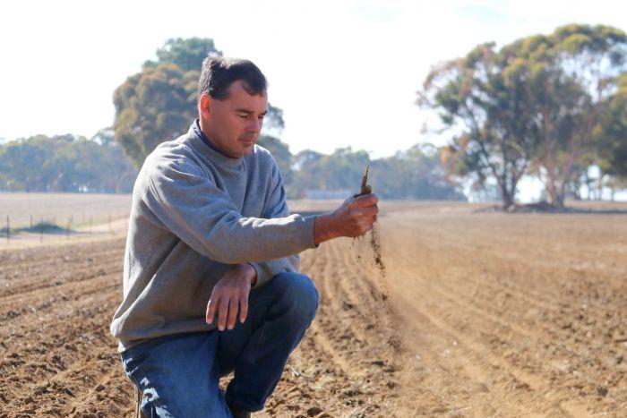 WA farmer