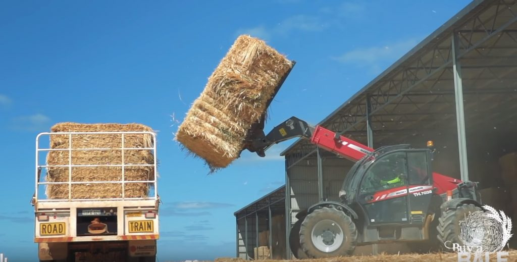 forklift loading hay onto truck - buy a bale